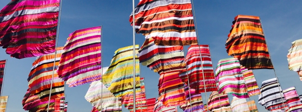 West Holts fabulous flags in the sunshine