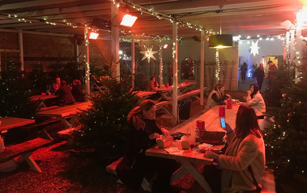 The main hall area filled with benches and Christmas trees in soft light, winter festival alpine