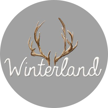 Winterland logo grey with antlers winter festival London Christmas events